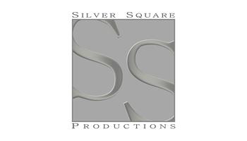 silver_square_350x200