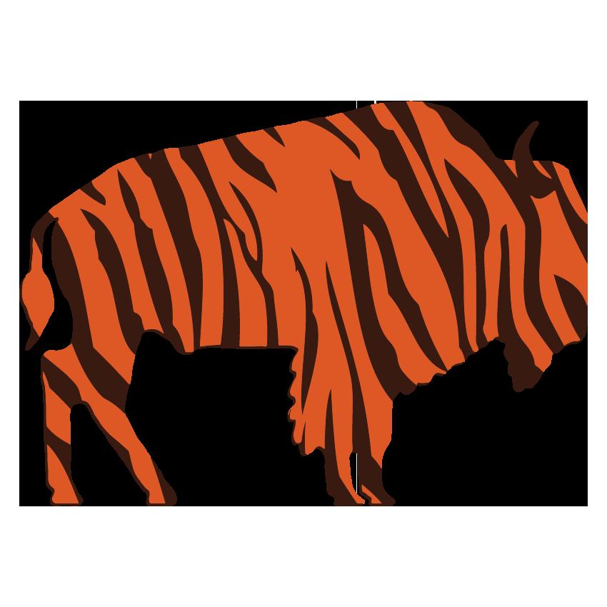 Bison Tiger